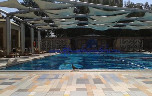 la piscina KUWAIT