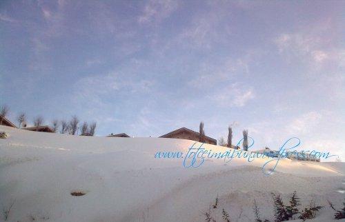 o zi de iarna lebanon