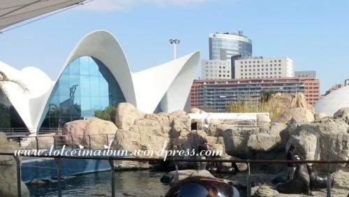 oceanografic SPAIN