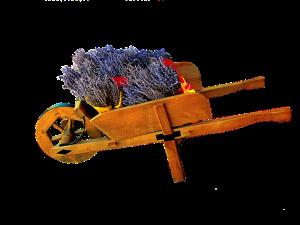 cart-752079_640
