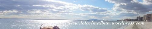 sunny day alicante