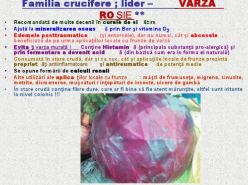 viewer23-1