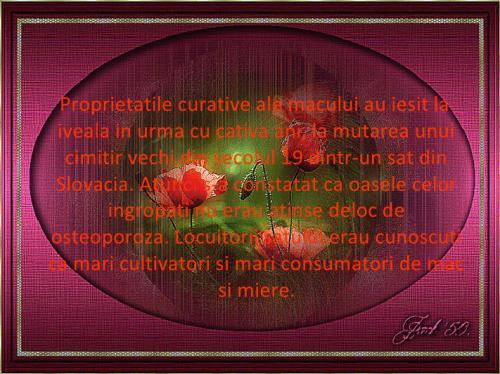viewer4-1